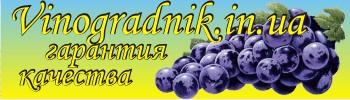 Саженцы винограда, проволока для шпалеры, сетка